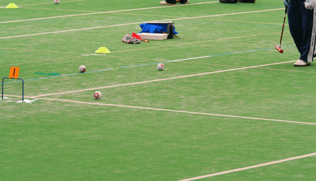 ゲートボールはチーム対抗のスポーツ!若者もする?この趣味は衰退か拡大か