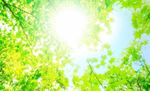 日光浴を趣味にするメリット2選